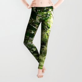 Welcome to the Jungle Leggings