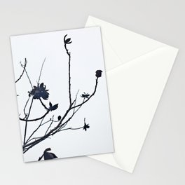 Winter Pecans Stationery Cards