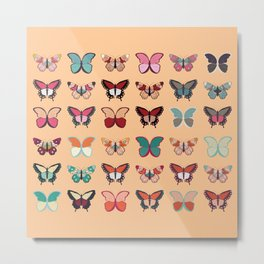 Butterflies collection 02 Metal Print