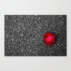 Elegant Simplicity Canvas Print