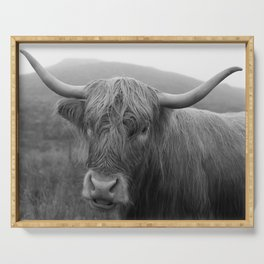 Highland cow I Serving Tray