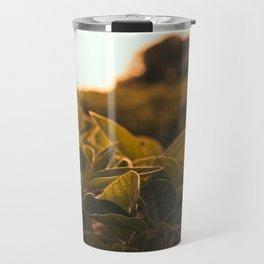 Soybean sunset Travel Mug