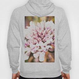 Floral trend Hoody