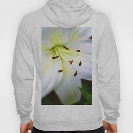 White Easter Lily Close Up Hoody