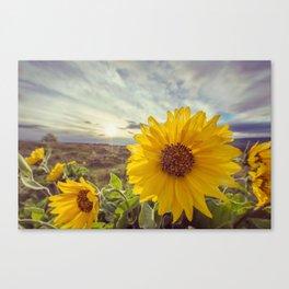 Rowena Wildflowers Canvas Print