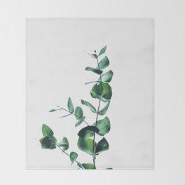 Eucalyptus branch Throw Blanket