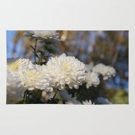 Fluffy flurries of white Chrysanthemum flowers Rug