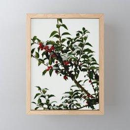 Snow-Kissed Holly Framed Mini Art Print