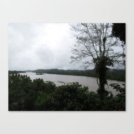 Ecuador River Canvas Print