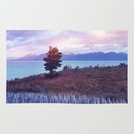 Sunset and lone tree Rug
