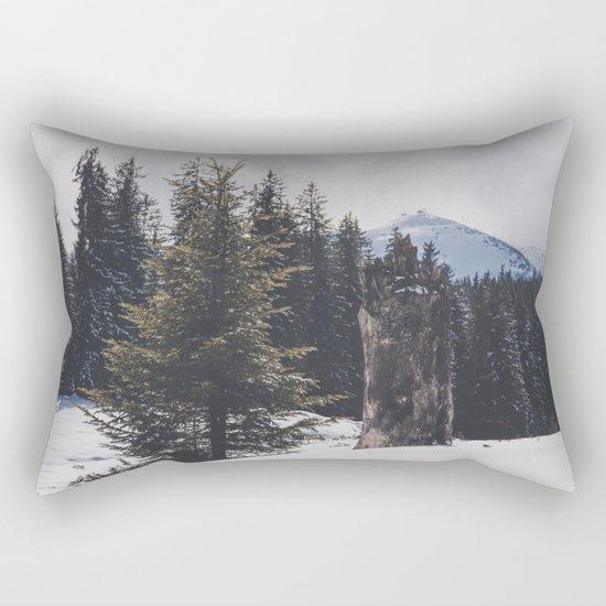 It´s wintertime Rectangular Pillow