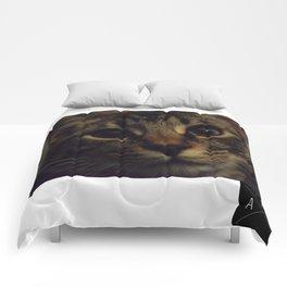 Cat named Zoey Comforters