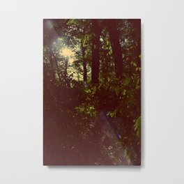 Tom Sawyer Metal Print