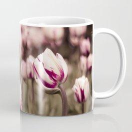 Flaming flag tulip Coffee Mug