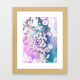 Echeveria Framed Art Print