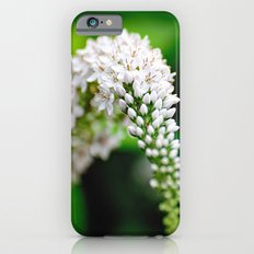 Spring has Bloomed Slim Case iPhone 6s