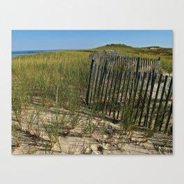 Cape Cod Beach Dunes Canvas Print
