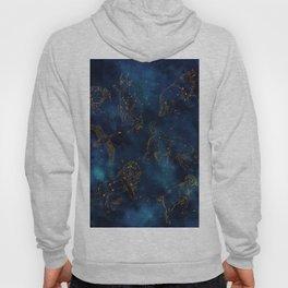 Animal Constellations Hoody