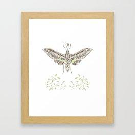 Hummingbird Hawk-Moth Framed Art Print