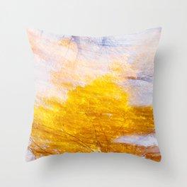 Indian Summer 4 Throw Pillow