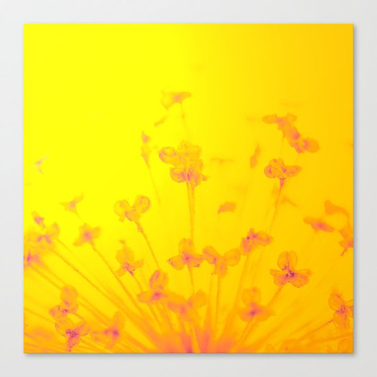 Bright Sunny Morning Canvas Print