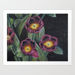 Buchenhoff Tulips Art Print