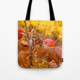 Autumn leafs Tote Bag