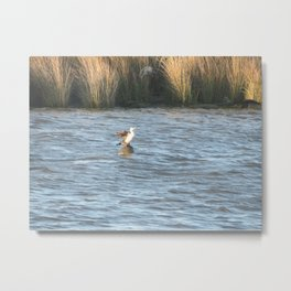 A Day at Wanchese Metal Print
