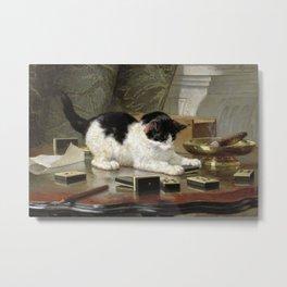 Kitten at Play Metal Print