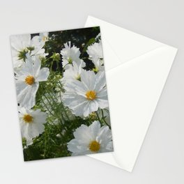 Artful Daisies Stationery Cards