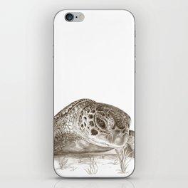 A Green Sea Turtle :: Earthtones iPhone Skin
