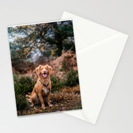 Mans Best Friend is a Dog 50 Stationery Cards