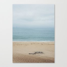 Half Moon Log Canvas Print