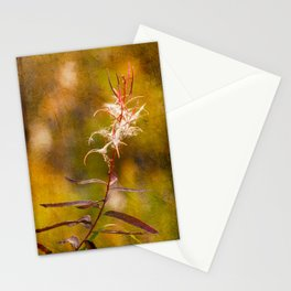 Autumn Blooms Stationery Cards