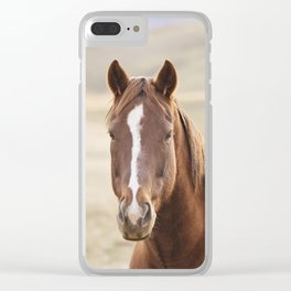 Colorful Western Horse Photo Clear iPhone Case