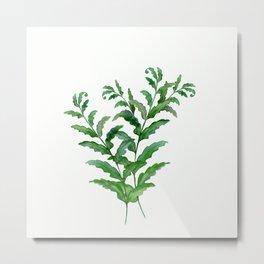 Fern leaves .2 Metal Print