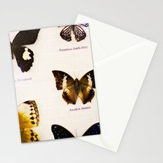 Forever Beautiful Butterfly Stationery Cards