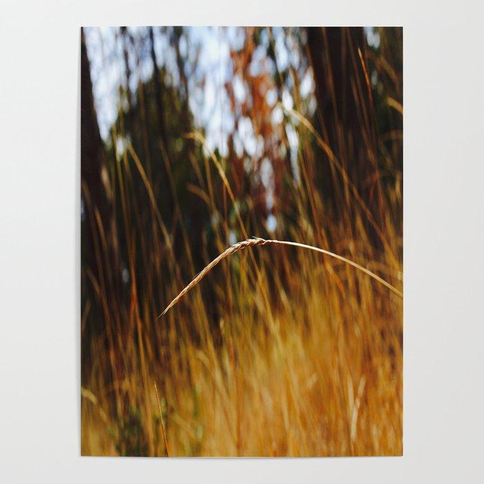 Stranded. Poster