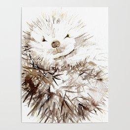 Hedgehog Cuddles Poster