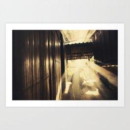 Asia 48 Art Print