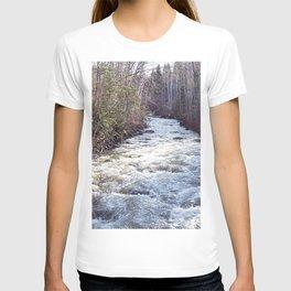 Swollen Creek Runs Wild T-shirt