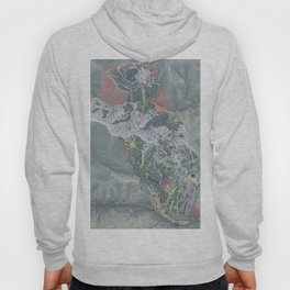 Vail Resort Trail Map Hoody