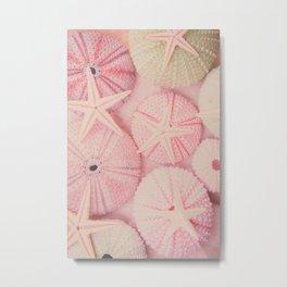 Seashells, Shells, Sea Urchin, Starfish, Pink, Beach, Pastel, Ocean, Sea, Nature Metal Print
