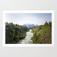 Tutshi River in Spring Art Print