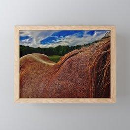 Horse's Mane and Back Framed Mini Art Print