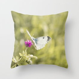 Butterfly on a spring flower Throw Pillow