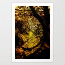 Golden Path Art Print