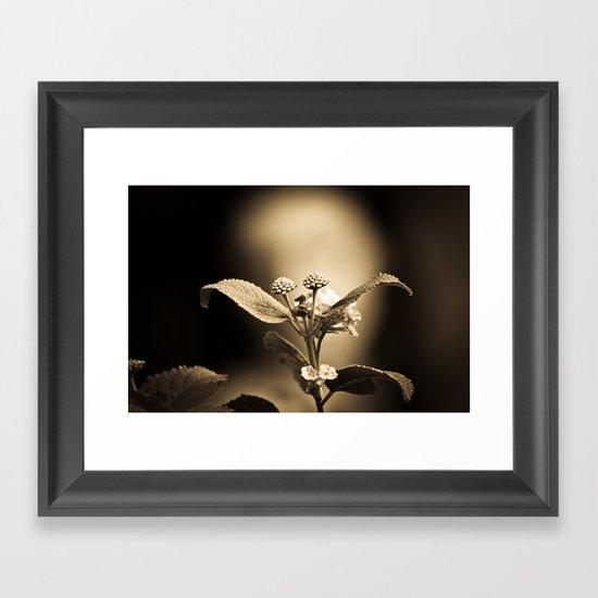 Venus in Flowers Framed Art Print