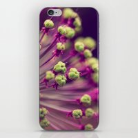 lime green iPhone & iPod Skins featuring Purple and Lime Green by Amelia Kay Photography