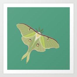 Luna Moth Drawing on Turquoise Background Kunstdrucke